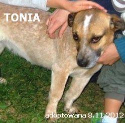tonia-249x246